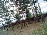 Земельный участок 25 соток (СНТ, ДНП)